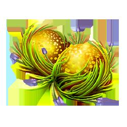 Icon 2 Fruitoids