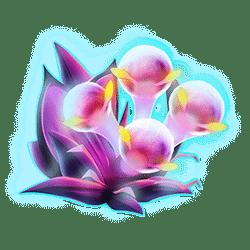 Icon 4 Fruitoids