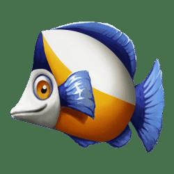 Icon 2 Golden Fish Tank