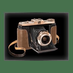 Icon 8 Safari