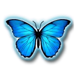 Icon 1 3 Butterflies