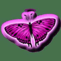 Icon 3 3 Butterflies