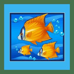 Icon 4 Blue Dolphin