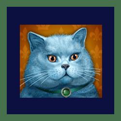 Icon 5 Diamond Cats