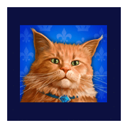 Icon 4 Diamond Cats