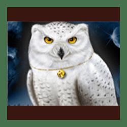Icon 3 Magic Owl