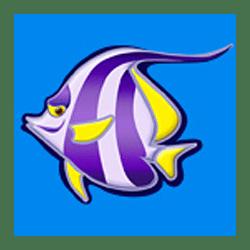 Icon 5 Wild Shark