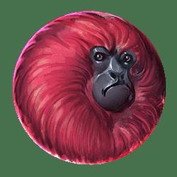 Icon 6 7 Monkeys