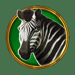 Icon 4 Hot Safari