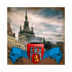 Icon 5 Domnitors