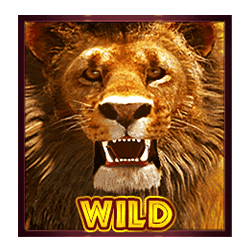 Wild Symbol of Hot Safari Slot