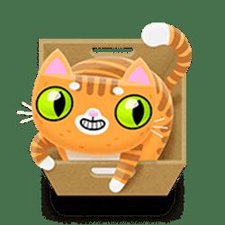 Icon 8 Not Enough Kittens