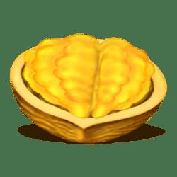 Icon 6 Crazy Nuts
