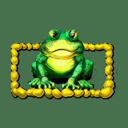Scatter of Frog Creek Slot