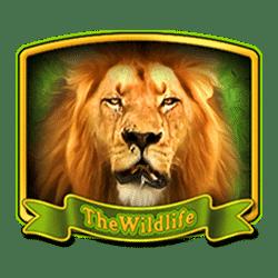 Wild Symbol of The Wildlife 2 Slot