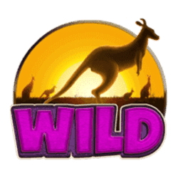 Wild Symbol of Boomerang Bonanza Slot