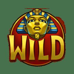 Wild Symbol of Temple of Tut Slot