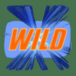 Wild Symbol of Winner's Cup Slot