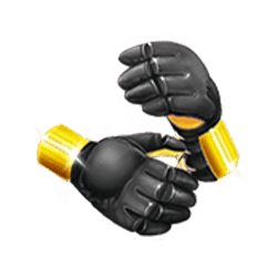 Icon 6 Wild Fight