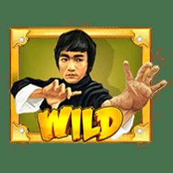 Wild Symbol of Wild Fight Slot