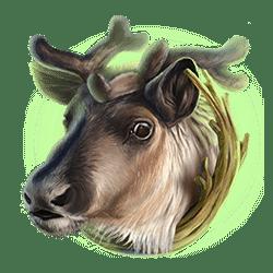 Icon 4 Kamchatka