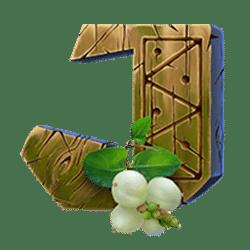 Icon 12 Kamchatka