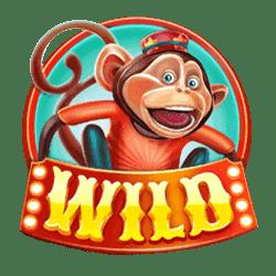 Icon 2 Wild Circus