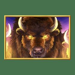 Icon 1 Buffalo Rising