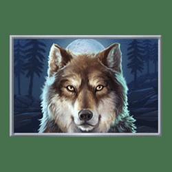 Icon 3 Buffalo Rising