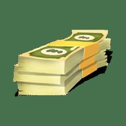 Icon 9 Piggy Bank