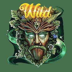 Wild Symbol of Faerie Spells Slot