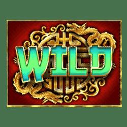 Wild Symbol of Tiger and Dragon Slot