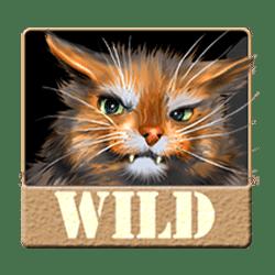 Wild Symbol of Customs Storage Slot
