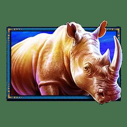 Icon 2 Safari King
