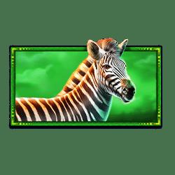 Icon 4 Safari King