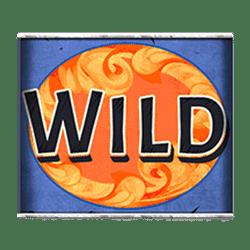 Wild Symbol of Niagara Falls Slot