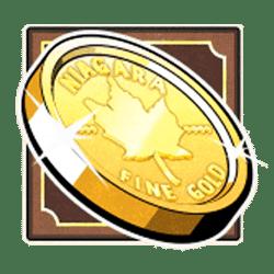 Icon 10 Niagara Falls