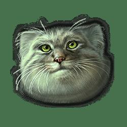 Icon 8 Super Cats