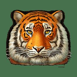 Icon 3 Super Cats