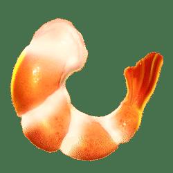 Icon 5 Hot Chilli