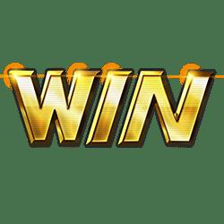 Icon 12 Win Win
