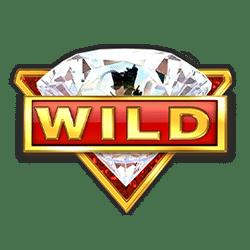 Wild Symbol of Win Win Slot