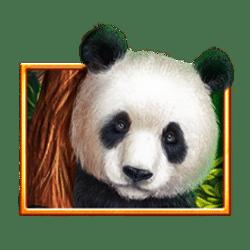 Icon 1 Bamboo Rush