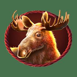 Icon 5 Buffalo King