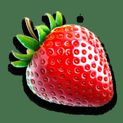 Icon 2 Fruit Rainbow