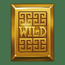Wild Symbol of Vault of Fortune Slot