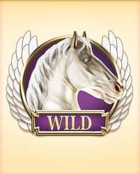 Wild Symbol of Divine Fortune Megaways Slot