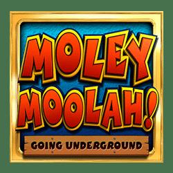 Icon 1 Moley Moolah