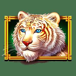 Icon 1 Dragon Tiger