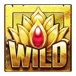 Wild Symbol of Katmandu Gold Slot